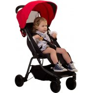 Phil & Teds Mountain Buggy