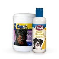 Zdravie a hygiena pre psy
