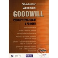 Goodwill - principy vykazování v podniku