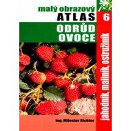 Malý obrazový atlas odrůd ovoce 6