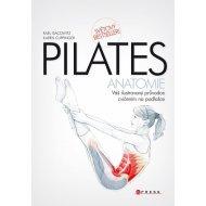 Pilates - Anatomie