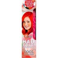 Élysée Hair Color Mousse Cool Colors 75ml