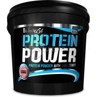 BioTech Protein Power 1000g