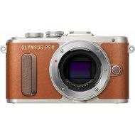 Olympus E-PL8